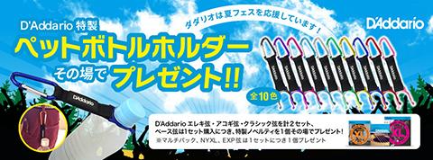 daddario_summercam_2016_2.jpg